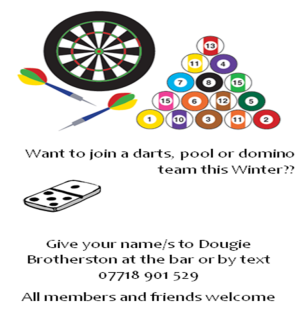 darts pool dominos