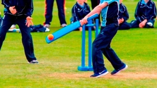 Kwik cricket batting action