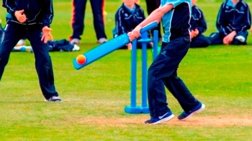 Kwik cricket batting action